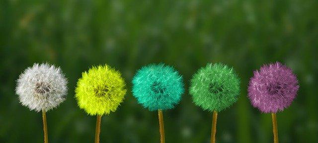 Por qué es útil «Mindfulness» en el ámbito jurídico